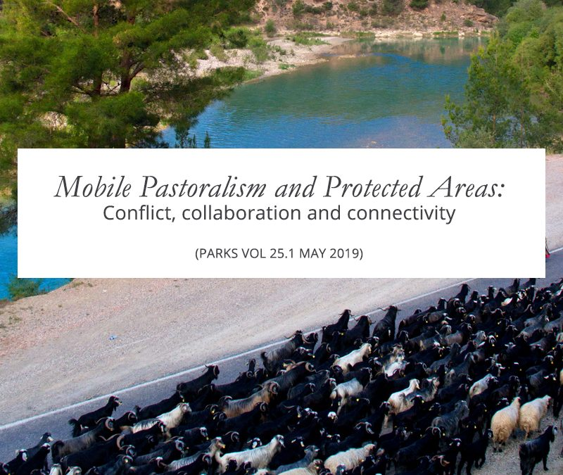 New Resource: Mobile Pastoralism and Protected Areas